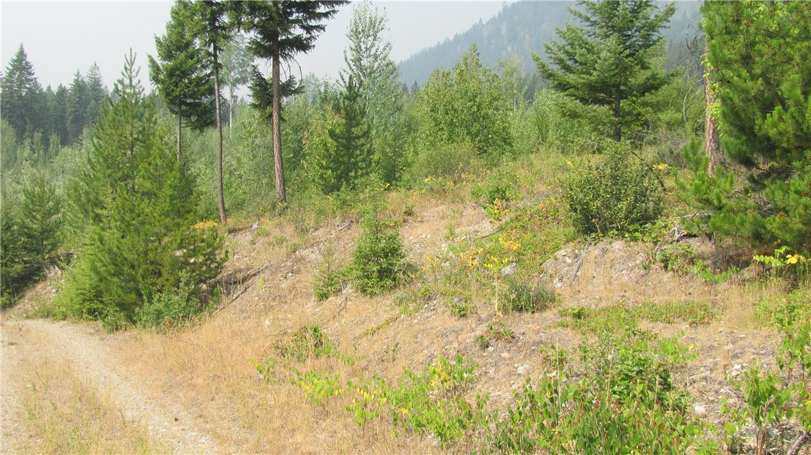 136acres Sugar Lake-Sihlis Road,, Vernon, British Columbia  V1H 2B1 - Photo 21 - 10139930