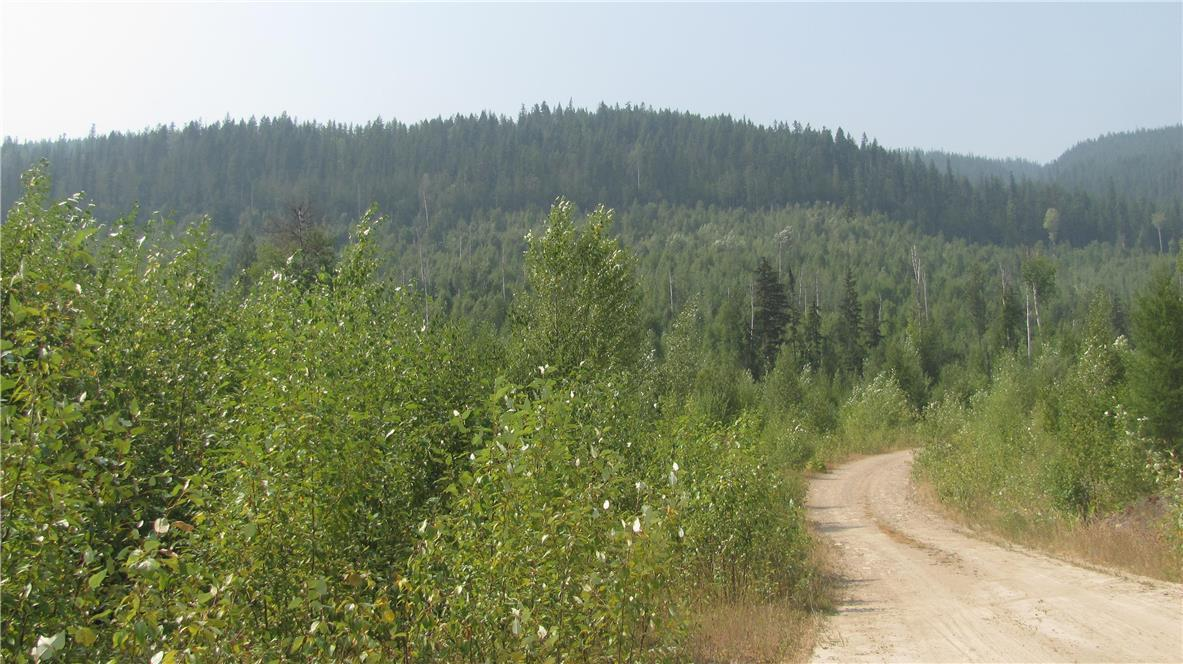 136acres Sugar Lake-Sihlis Road,, Vernon, British Columbia  V1H 2B1 - Photo 23 - 10139930