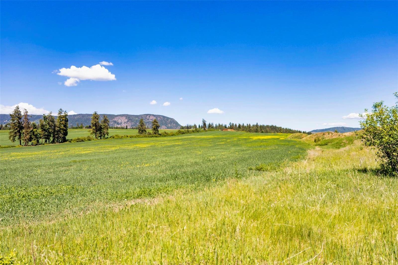 4602 Schubert Road,, Armstrong, British Columbia  V0E 1B4 - Photo 5 - 10232684